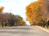 avenue-of-trees-in-fall-2