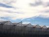 greenhouses-2